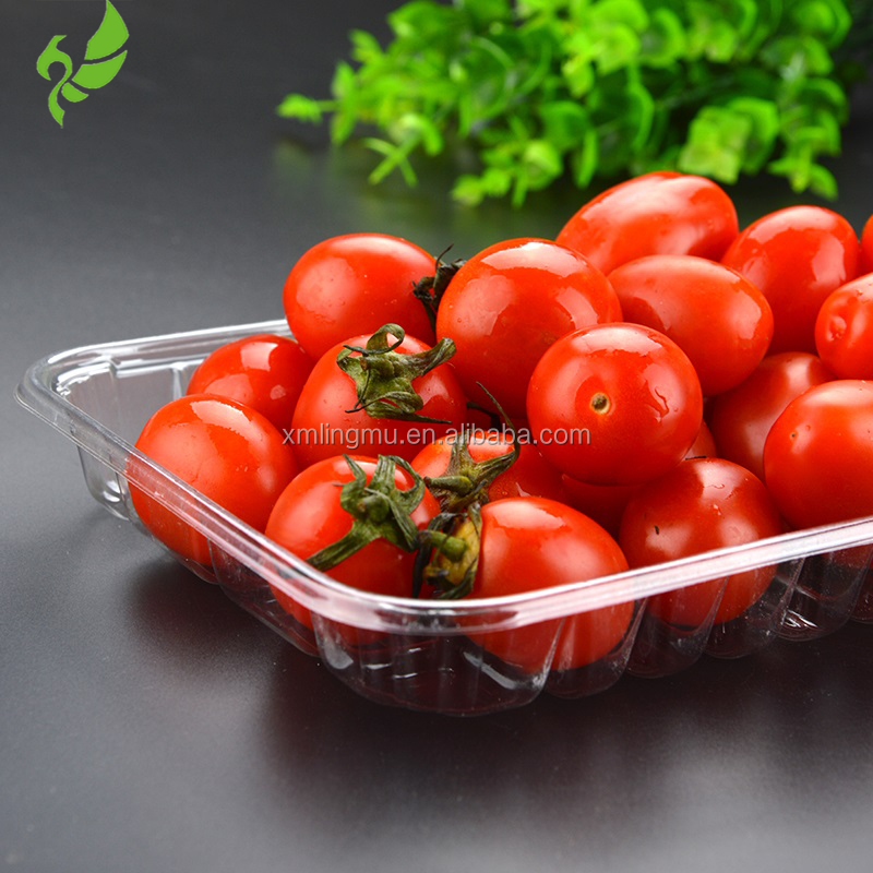 Fresh Dairy/ Meat/ Fish&Poultry Packaging New Style Different Types&Colors PET Food Container