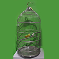 Round Stainless Steel Birds Cage European Style Diameter 50cm