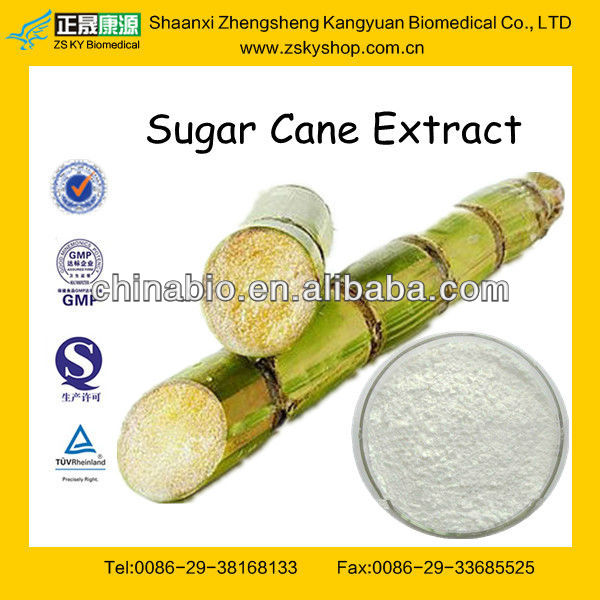 Factory sale Sugar Cane Extract with low price