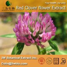 Nautral Healthy product Red Clover flower Extract