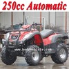 /product-detail/new-china-250cc-quad-s-with-automatic-mc-356--60141098268.html