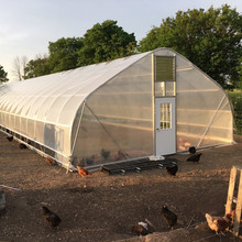 High quality tunnel greenhouse