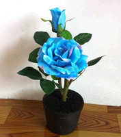 beautiful hydrangea blue flower solar landscape light