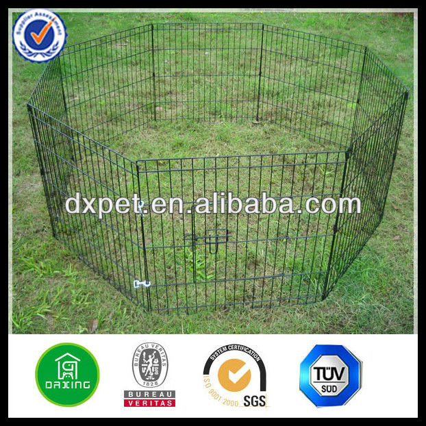 wire mesh exercise pen DXW005
