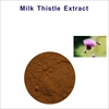 Free Sample Herbal Extract Antioxidant Water Soluble Silymarin Inverntory In USA Liver Care Milk Thistle Extract