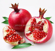 2015 New Product for Export Pomegranate Seed Oil Bulk