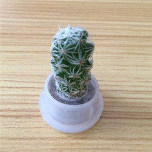 UCHOME Live Mini Plant and Plant Pet Tree