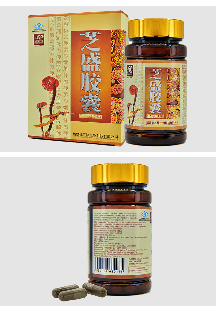 Hot Sale Organic Gano Herb Reishi Ganoderma Spore Extract Healthy Capsule CS4