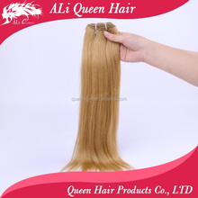 ALI Queen Wholesale Blonde Color Beauty Virgin Straight Indian Hair Weft For Vendors