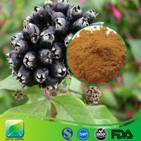 Pure Natural Siberian Ginseng Root Extract