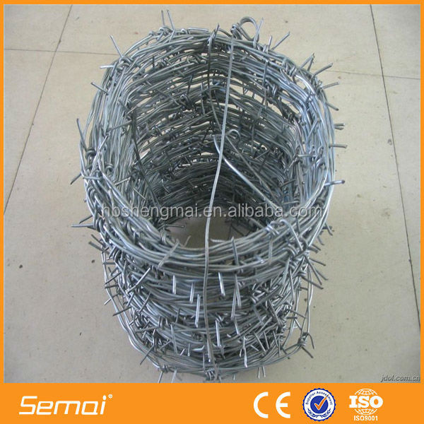 Galvanized Barbed Wire Fence/PVC Coated Barbed Wire/Stainless Steel Barbed Wire
