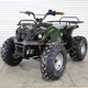 Professional Disc Brake 48V 800W Electric ATV for Hunting