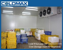 china vegetable/meat cool storage deep freezer cold room (CR-100)