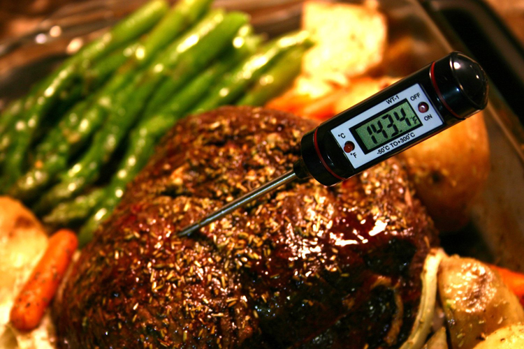 Portable Digital Kitchen Thermometer BBQ Meat Water Oil Cooking Electronic Probe Food Oven Thermometer WT-1 With Tube