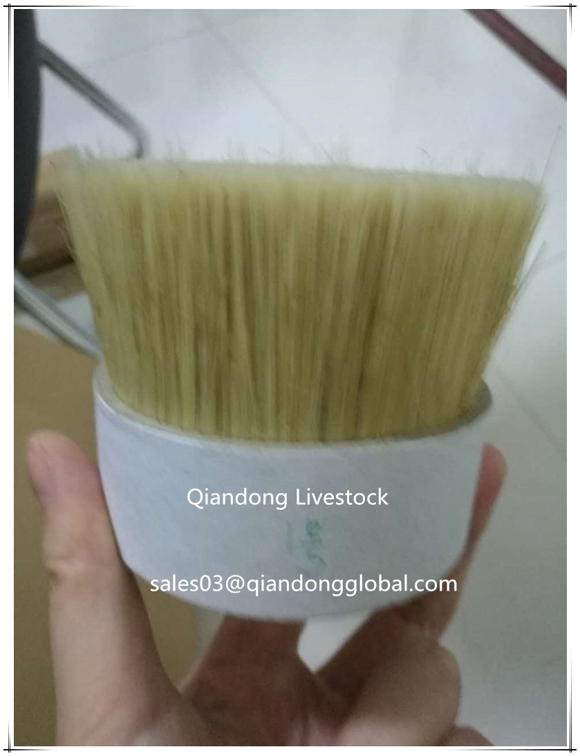 57mm Hard Pig Bristle Hair Mix PP For Paint Brush