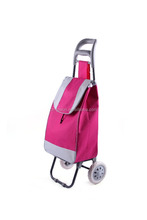 Foldable and fashionable trolley bags with 600D polyester