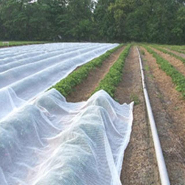 pp non-woven fabric eco non-woven fabric ground cover