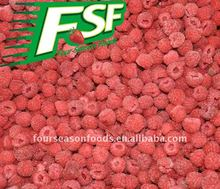 IQF raspberry four season foods supply red berry
