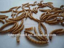 Bird Love Dried Mealworm Pet Food