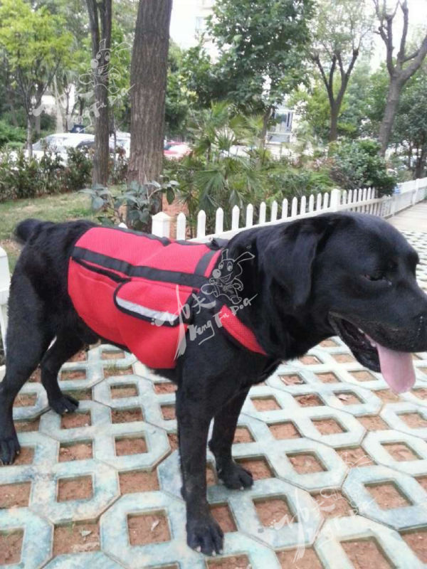 Newest Professional Multi-functional Red Pet Dog Carry Bag