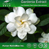 Hot sale Plant extract Gardenia extract powder/Geniposide 98%/Gardenia extract