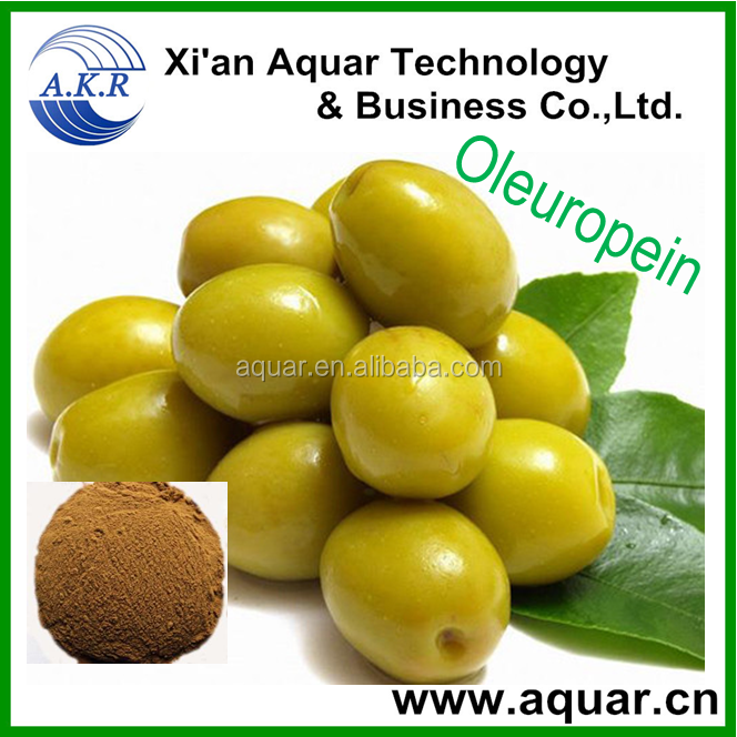 100% Natural Olive Leaf Extract Oleuropein 10%-20%