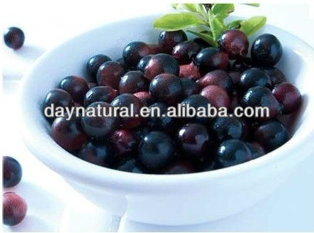 Factory Supply Acai Berry Juice Powder 10:1 20:1 (Hot sale)!