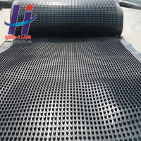 Hot sale of the plastic drainage board green roof drainage board