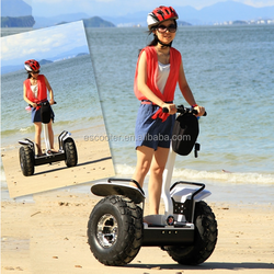 High Quality two wheels electric skateboard wholesale price