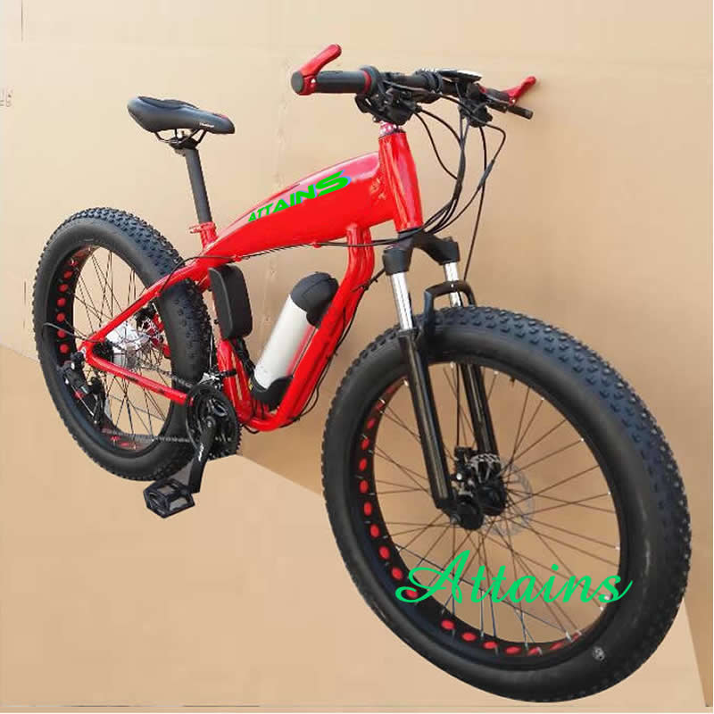 High quality machine grade self balancing electric scooter/ city fat tire bike/ motorcyle of China