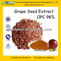 Grape Seed Extract OPC 95% from GMP Factory with Top Quality