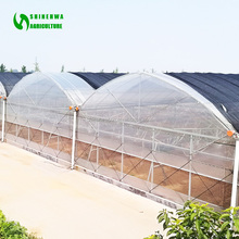 Multi Span PE Plastic Film Hydroponic Systems Greenhouse Agricultural