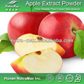 Apple Cider Vinegar Powder, Apple Cider Powder, Apple Vinegar Powder