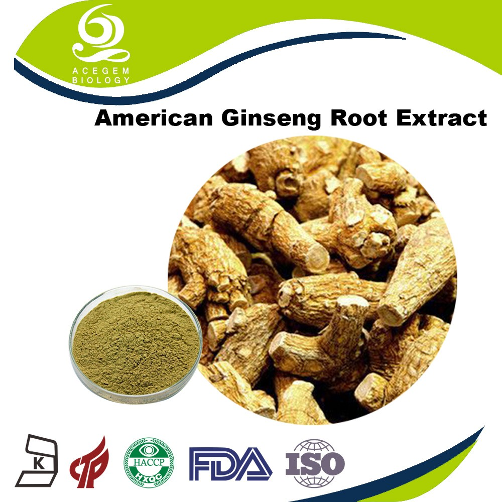 100% natural American ginseng root extract for diabetes treatment
