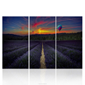 Abstract Lavander Field Landscape Pictures Canvas Painting HD Printed Wall Art for LIving Room 40x80cmx3pcs/set