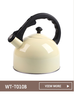 2.5L Copper Painting Stainless Steel Whistling Tea Kettle/Whistle Kettle
