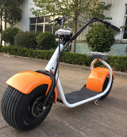 Hot Sales Promotion Scrooser 2016 fashion big wheel citycoco scooter off road electric motorcycle from china