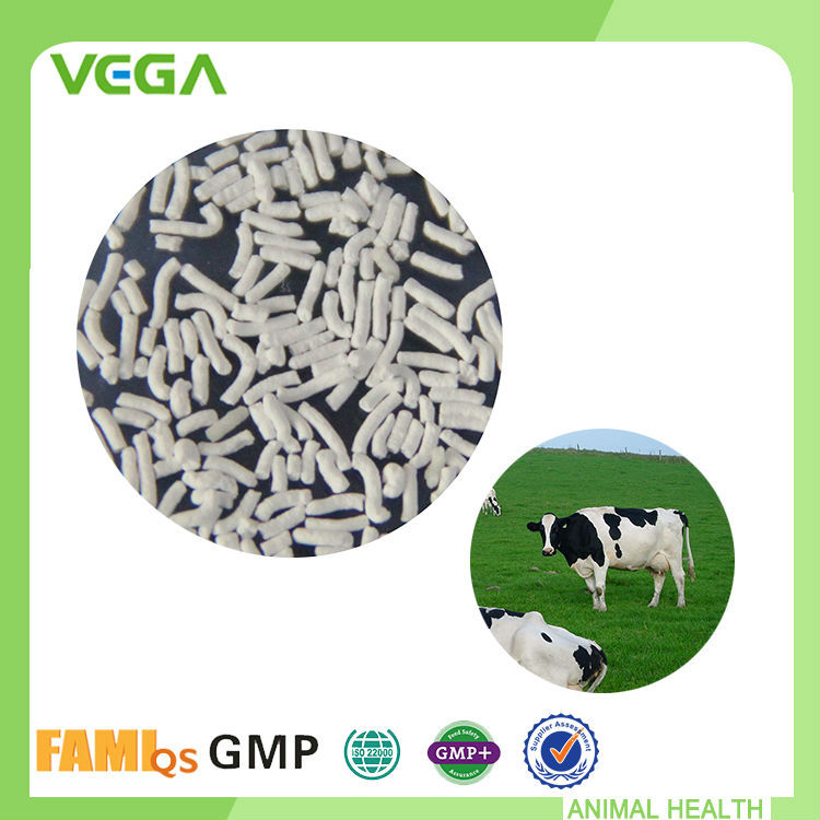 Natural Digestive Support Formula Personalized Adjust Intestines DL-Methionine Feed Grade For Cow