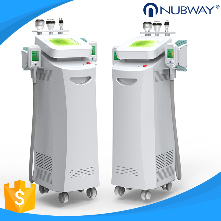 Weight Loss Cryolipolisis Body Slimming Machine Skin Care Product