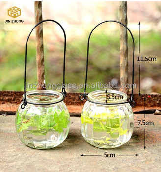 Hydroponics vase opening transparent glass hanging