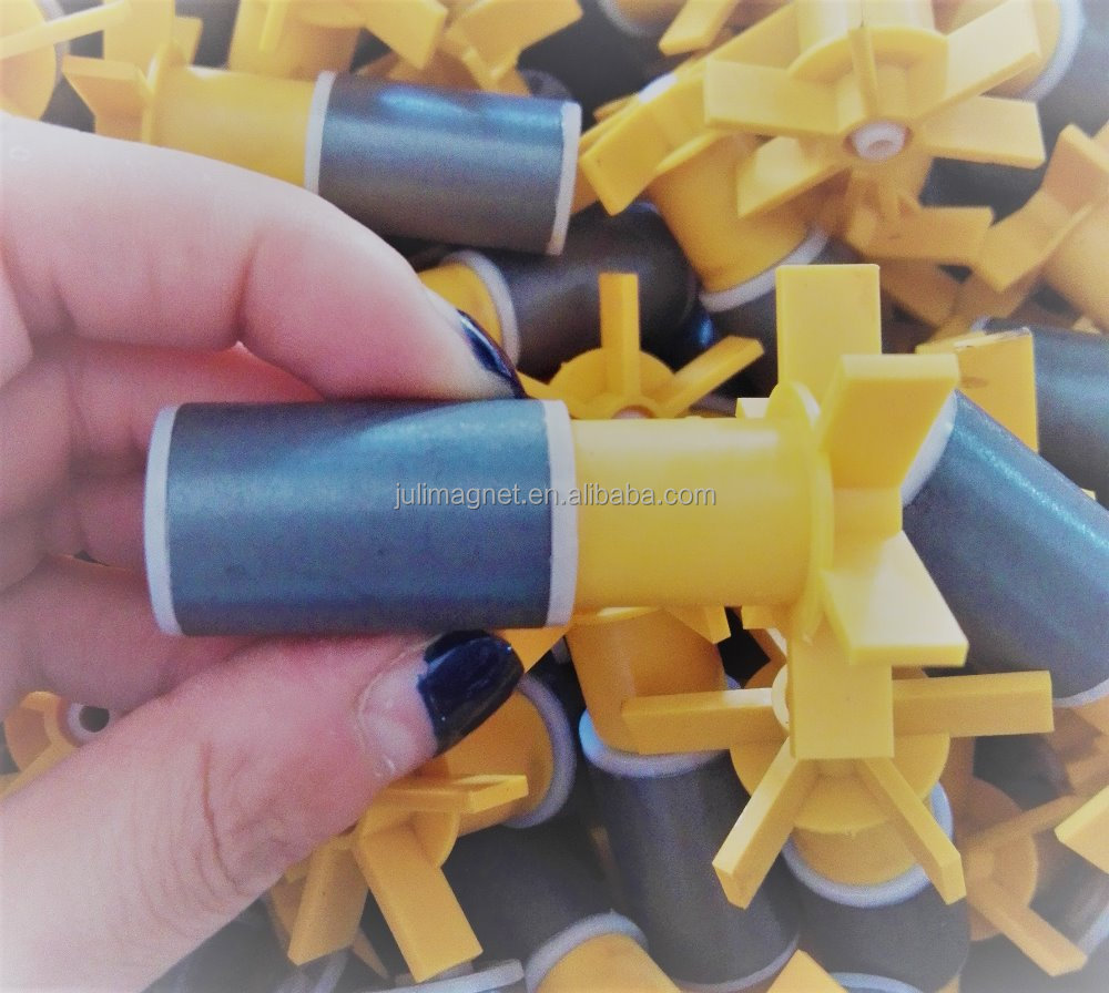 19X30 Plastic Injection Ferrite Magnetic Rotor