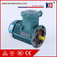Explosion Proof Brand New Three Phase Motor With Different Pole
