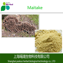 Preventing Anemia and Scurvy Maitake Powder