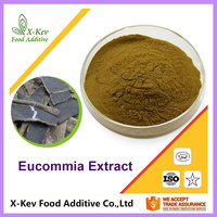 Natural Eucommia Leaf Extract Chlorogenic Acid 10% 20% 25% 30% 98%
