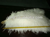 Ostrich Feather Centerpieces For Event Solutions Decoration