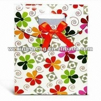 factory price plastic dried fruit package bag high quality 2013 fashion gift Packaging Bags