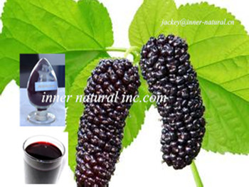 Mulberry Fruit Extract Anthocyanidins 10%-25% ISO22000/HACCP/KOSHER Manufacturer