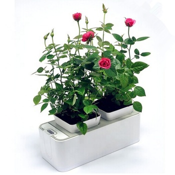 Creative mini smart garden for plants indoor Smart garden hydroponic flower planter