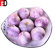 Spanish red single clove garlic garlic fresh, wild purple male garlic