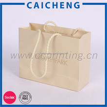 Custom Paper Carrier Paper Garment Bag